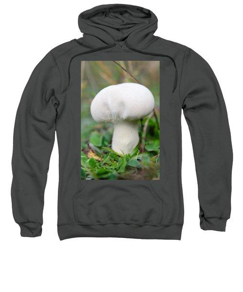 Lycoperdon Sweatshirt