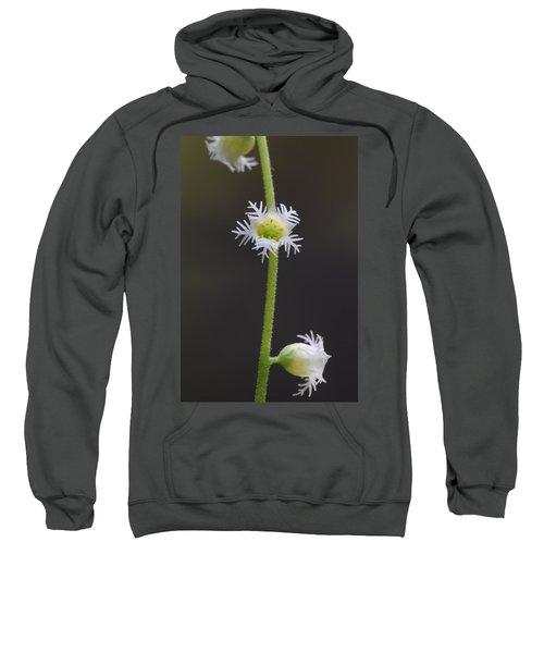 Miterwort Flowers Sweatshirt