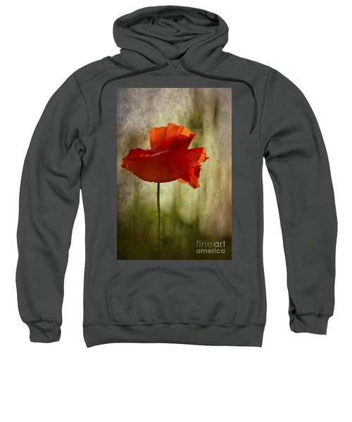 Moody Poppy. Sweatshirt