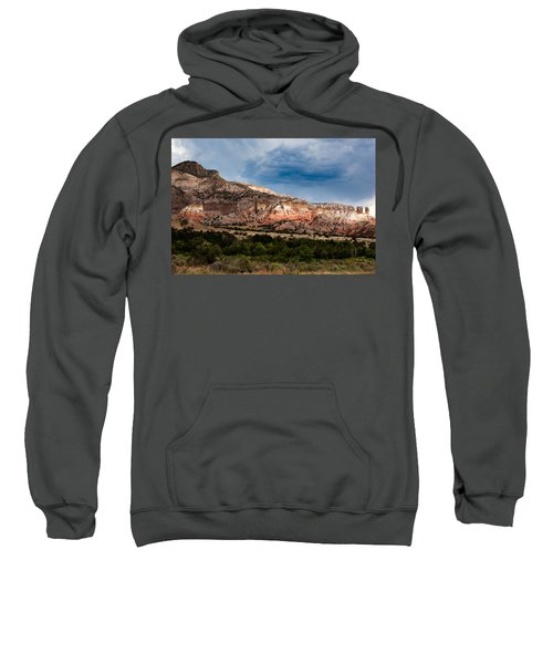 Nature's Paintbrush Sweatshirt