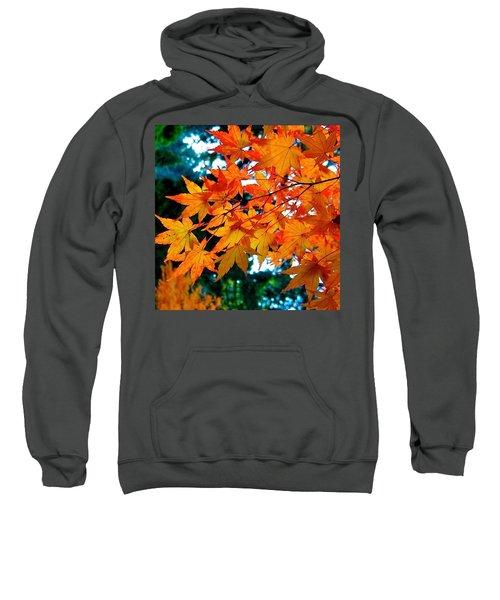 Orange Maple Leaves Sweatshirt