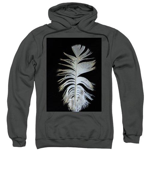 Owl Clothes Sweatshirt