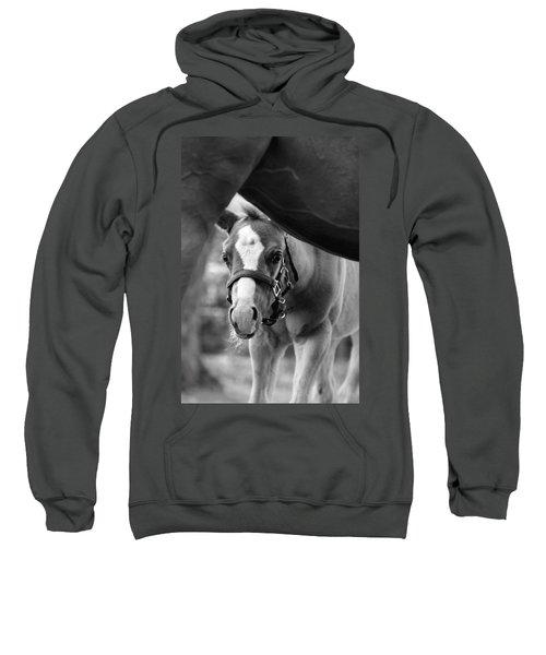 Peek'a Boo - Black And White Sweatshirt