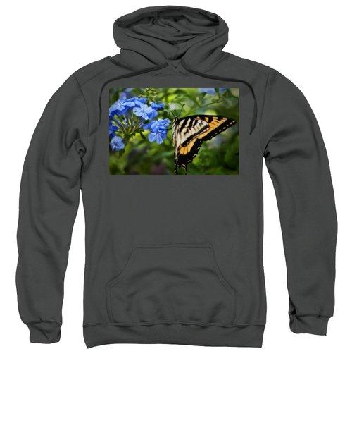 Plumbago And Swallowtail Sweatshirt