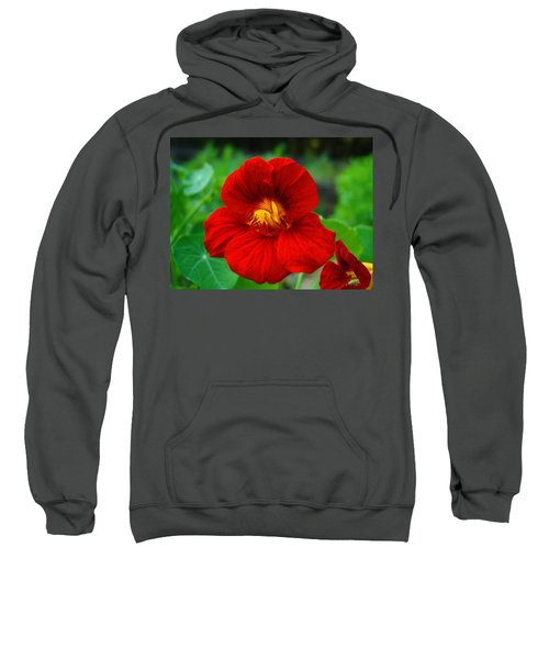 Sweatshirt featuring the photograph Red Daylily by Bill Barber