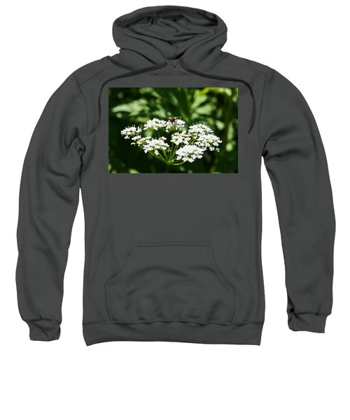 Refractions Sweatshirt