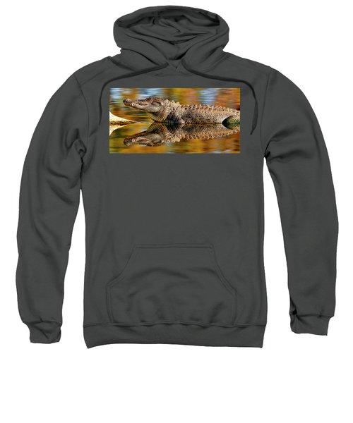 Relection Of An Alligator Sweatshirt