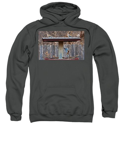 Room For One More Sweatshirt
