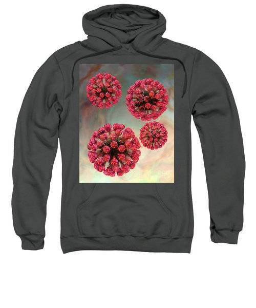 Rubella Virus Particles Sweatshirt