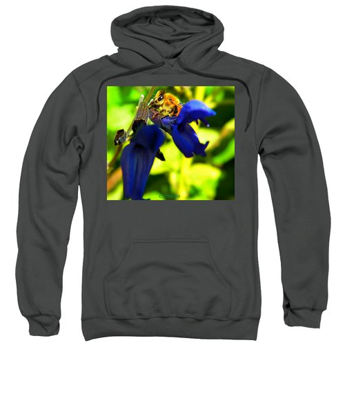 Sage And Bee Number Two Sweatshirt