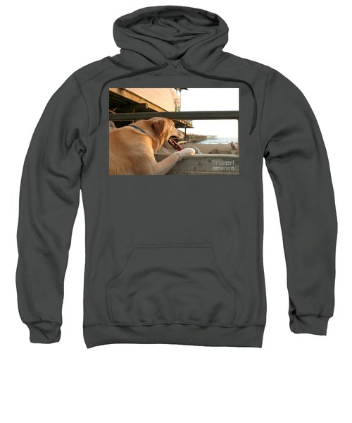 Searching The Ocean Sweatshirt