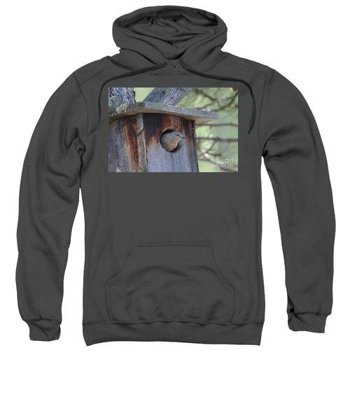 She's Home Sweatshirt
