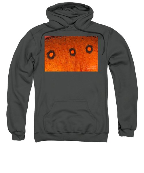 Skin Of Eastern Newt Sweatshirt by Ted Kinsman