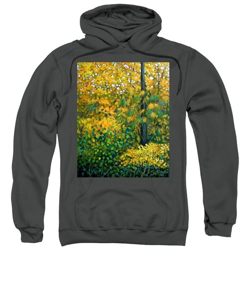 Southern Woods Sweatshirt