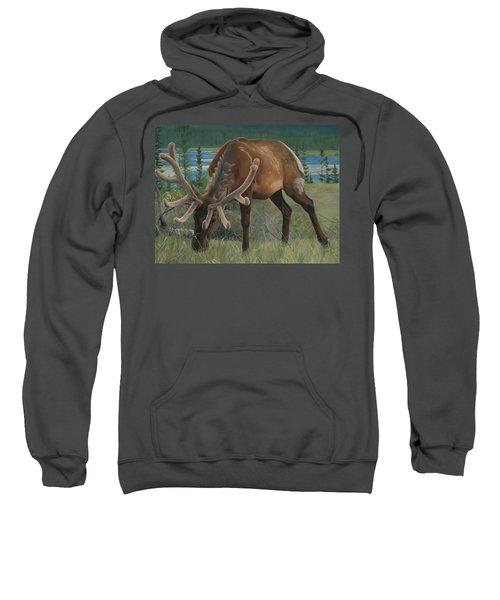 Spring Gazing Sweatshirt