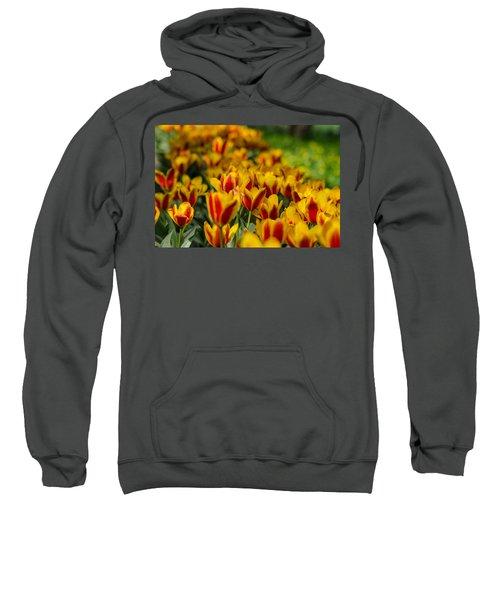 Spring Mood Sweatshirt