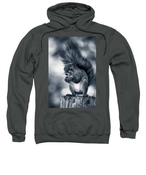 Squirrel In Monochrome Sweatshirt