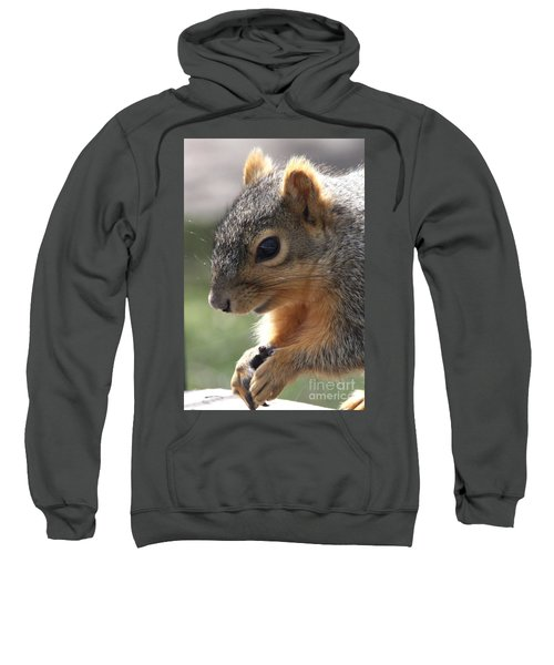 Squirrel Praying Sweatshirt