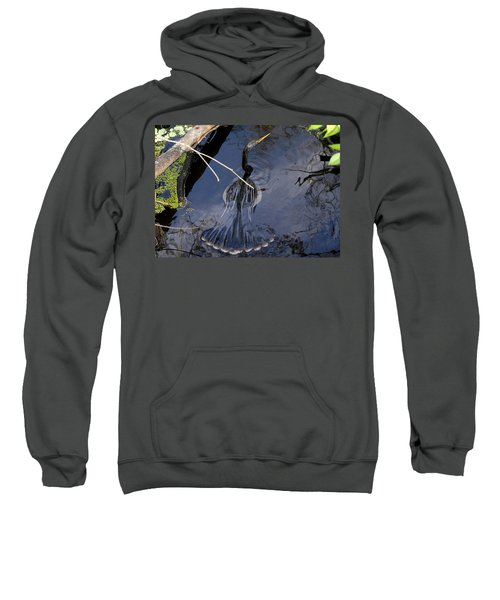 Swimming Bird Sweatshirt by David Lee Thompson