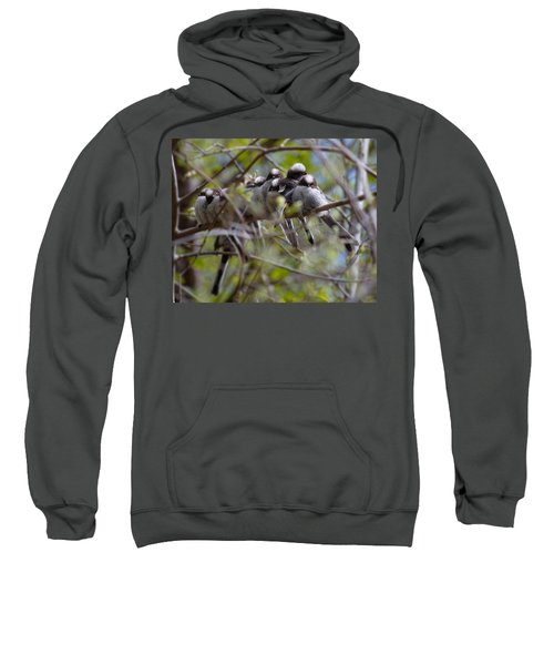 The Huddle Sweatshirt