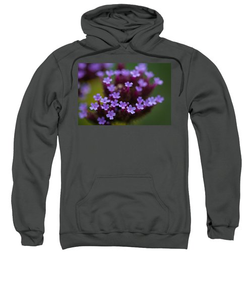 tiny blossoms II Sweatshirt