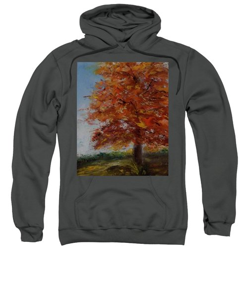 Transition Sweatshirt