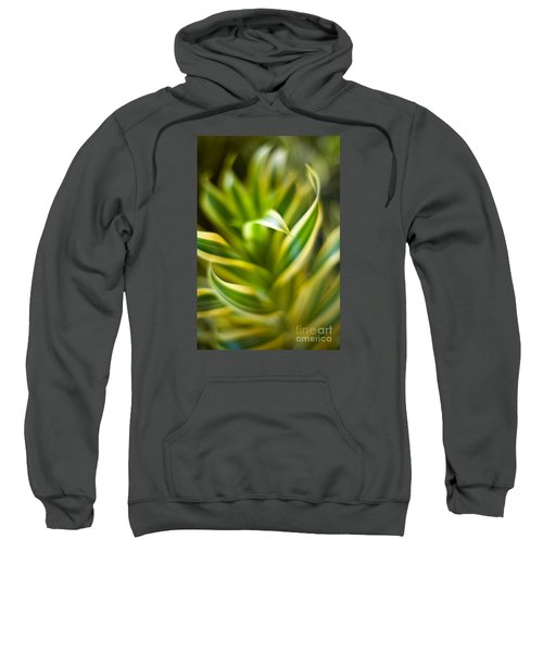 Tropical Swirl Sweatshirt