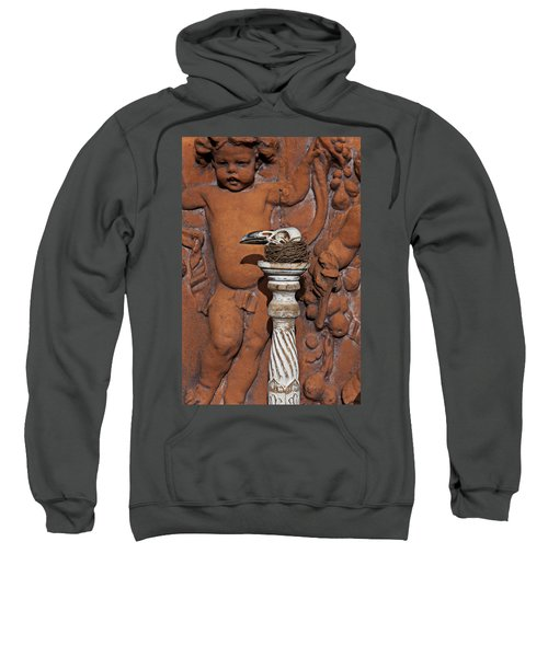 Turkey Vulture Skull Sweatshirt