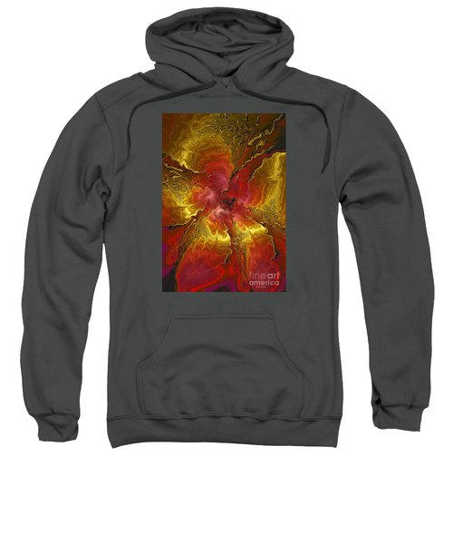 Vibrant Red And Gold Sweatshirt