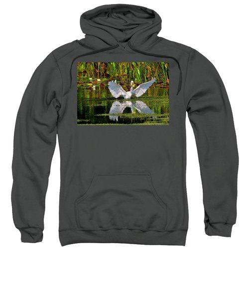 Wetlands Sweatshirt
