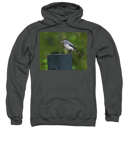 White-eyed Slaty Flycatcher Sweatshirt by Tony Beck