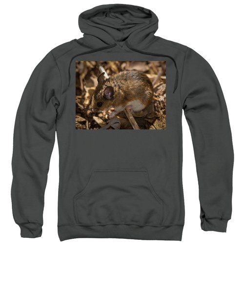 White-footed Mouse Sweatshirt