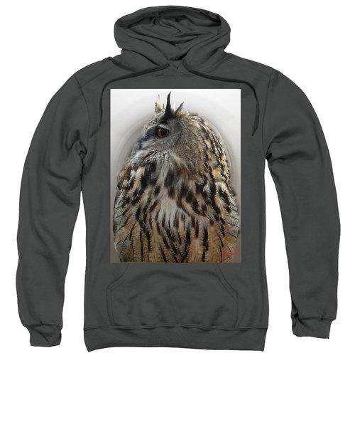 Wise Forest Owl Alicante Region Spain Sweatshirt