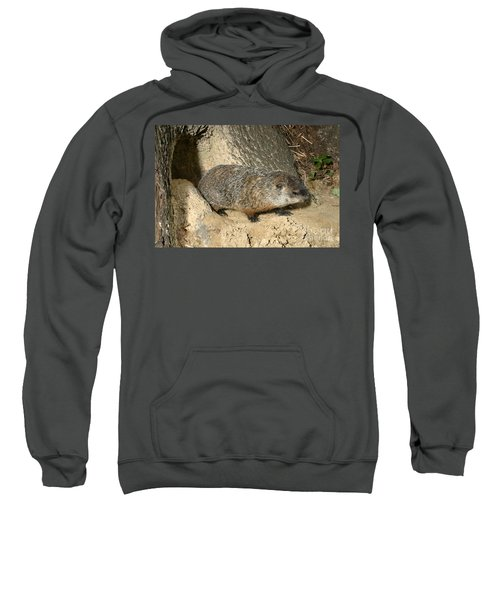 Woodchuck Sweatshirt