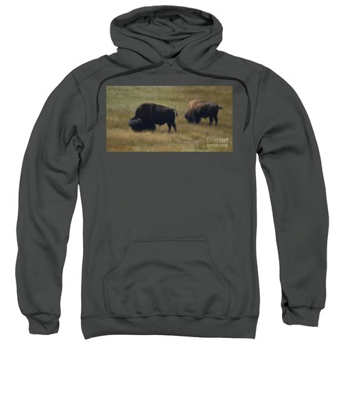 Wyoming Buffalo Sweatshirt