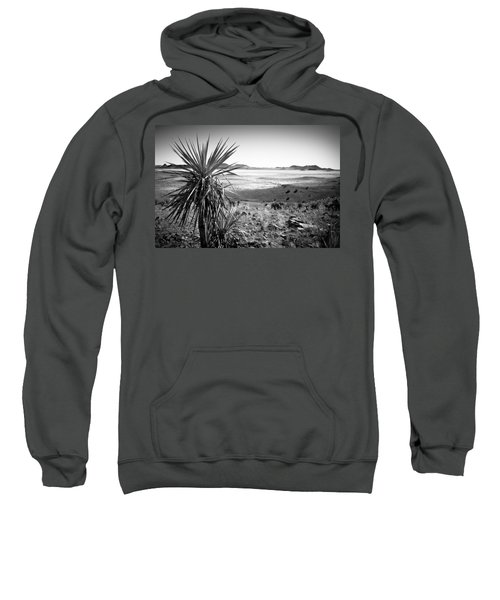Yucca With A View Sweatshirt