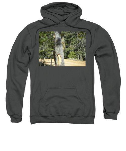 Squirrel Home Divide Co Sweatshirt