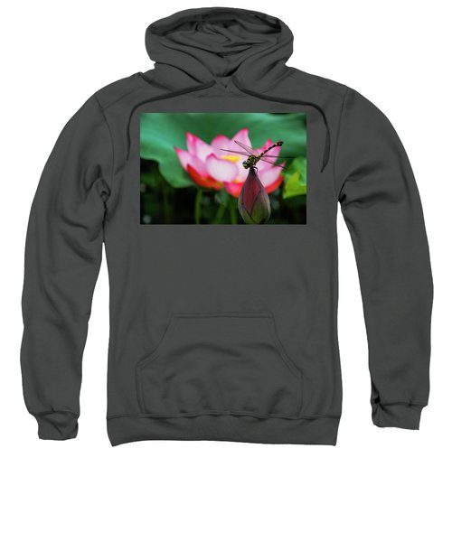 A Dragonfly On Lotus Flower Sweatshirt