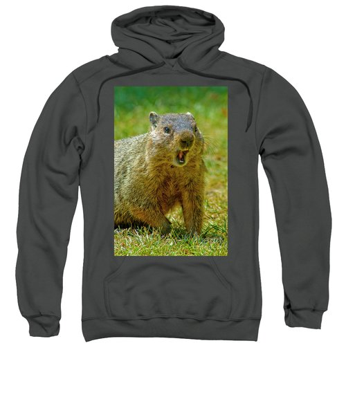A Hungry Fellow  Sweatshirt by Paul W Faust - Impressions of Light