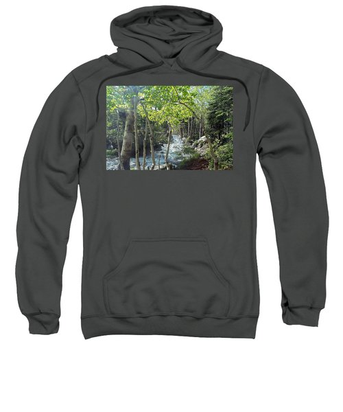 Along Alberta Falls Trail Rocky Mountain National Park Sweatshirt