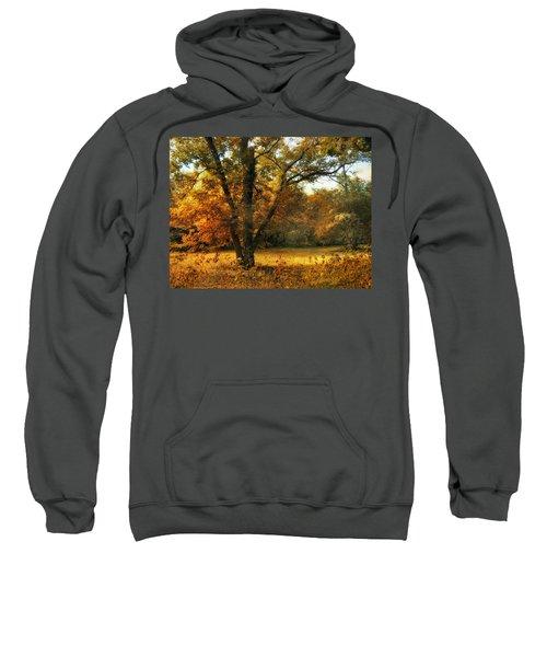 Autumn Arises Sweatshirt
