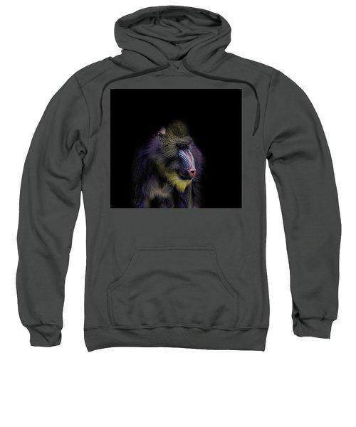 Baboon Portrait Sweatshirt