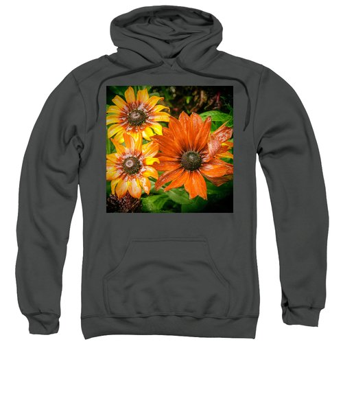 Black-eyed Susan Sweatshirt