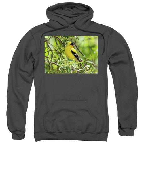 Blending In Sweatshirt