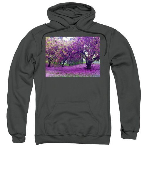Blossoms In Central Park Sweatshirt