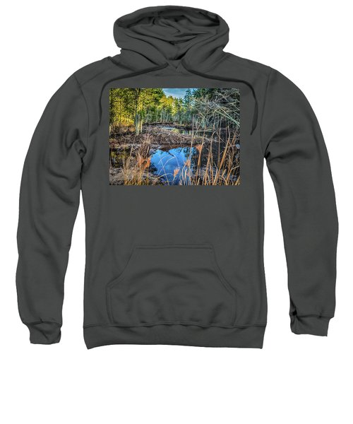 Blue Reflection Sweatshirt