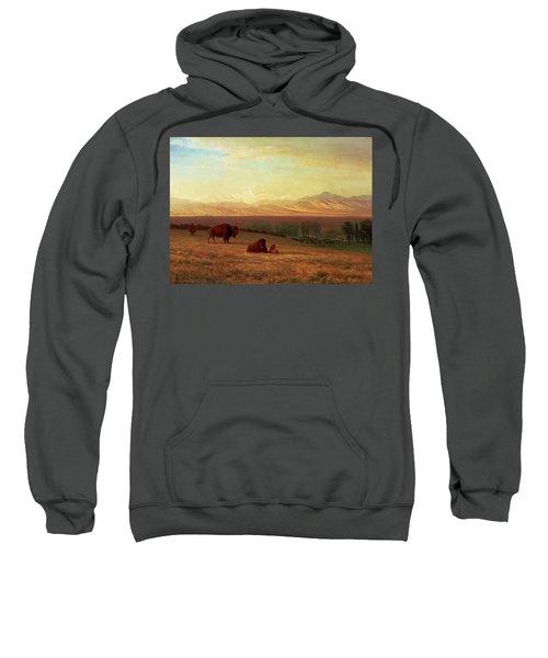 Buffalo On The Plains Sweatshirt
