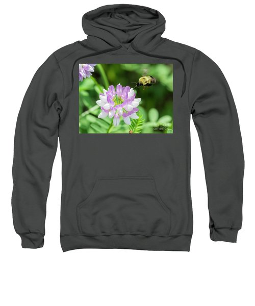 Bumble Bee Pollinating A Flower Sweatshirt by Ricky L Jones
