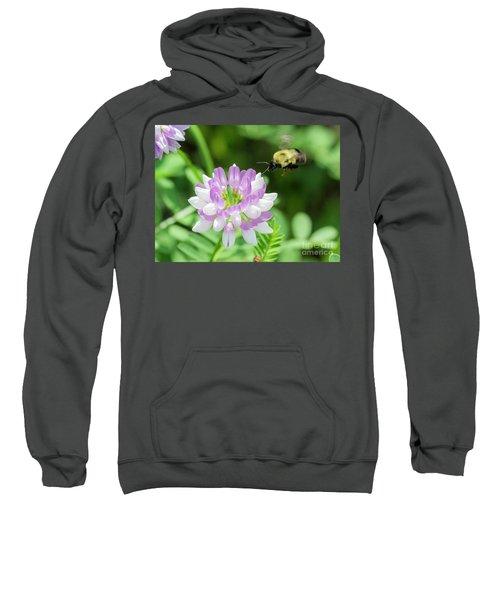 Bumble Bee Pollinating A Flower Sweatshirt