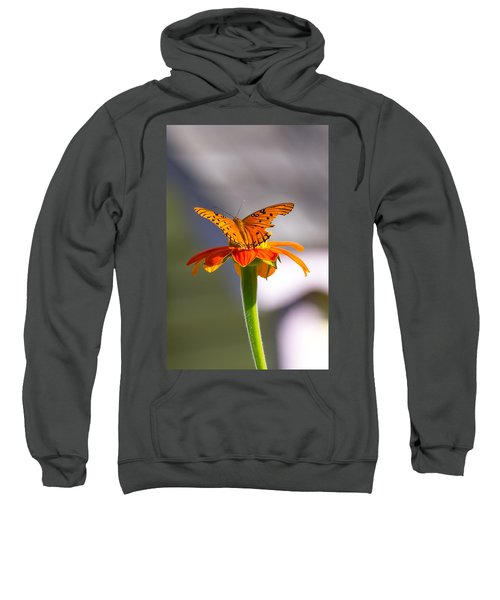 Butterfly On Flower Sweatshirt